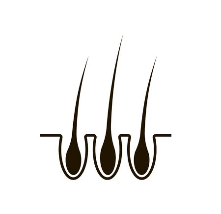 Hair icon, image of human hair on a white background.