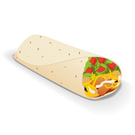Vector illustration of tasty mexican burrito on a white background
