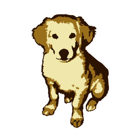 golden retriever: Fun and cute little dog golden retriever painted in the style of pop art