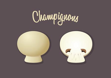 champignon: champignon mushroom vector illustration Illustration
