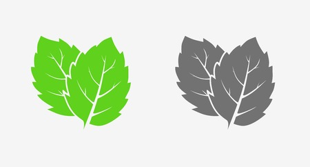 Mint. Icon set. Green and gray. Isolated leaves on white background