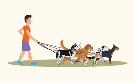 Man walking many dogs of different breeds. Vectores