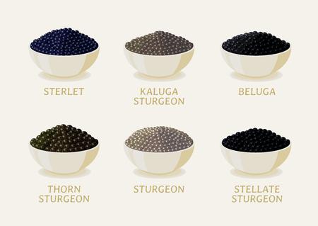 Set of black caviar on white plate