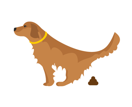 Dog pooping Illustration. Clean after your dog concept. Picture showing a golden retriever pooping.