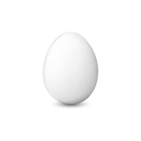 White chicken egg. Realistic vector illustration isolated on a white background. Illustration