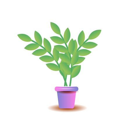 A plant in the pot isolated on the white background. Vector illustration of the plant put into the flowerpot. Ilustração