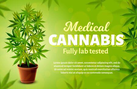 Medical cannabis vector banner. Realistic marijuana plant. 免版税图像 - 143608463