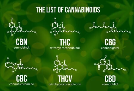 Realistic vector illustration of cannabinoid compounds. Chemical structure of cannabis components. 免版税图像 - 143608468