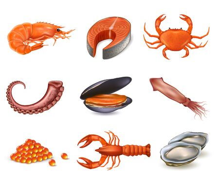 Set of seafood realistic objects. Salmon steak, shrimp, caviar and lobster. 矢量图像