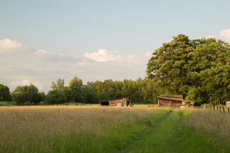 Wooden Farm Sheds in Field photo