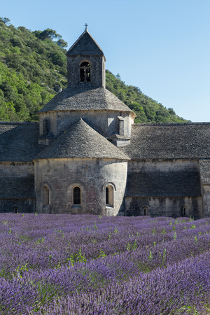 senanque: Abbey and Monastery of Senanque with Rows of Lavender, Provence Stock Photo