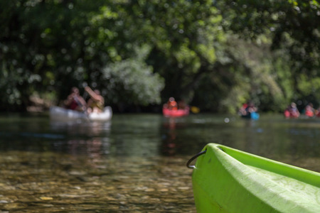 cayak: Canoeing and Kayaking on River and Lake in Forest during Summer Holiday Stock Photo