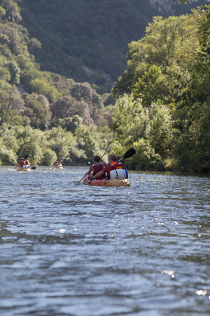 cayak: Canoeing and Kayaking on River in Forest during Holiday
