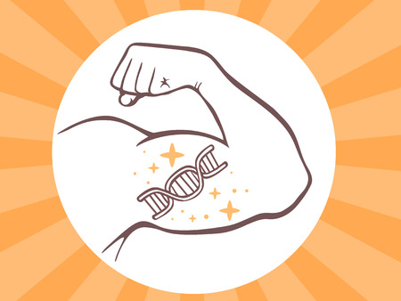 hormone  male: Vector illustration of strong man hand with  icon of dna molecule chain on bright background. Manly line art design for web, site, advertising, banner, poster, board and print.