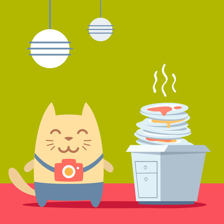 unwashed: Character photographer with a camera colorful flat. Cat male stands in the kitchen near a pile of dirty dishes
