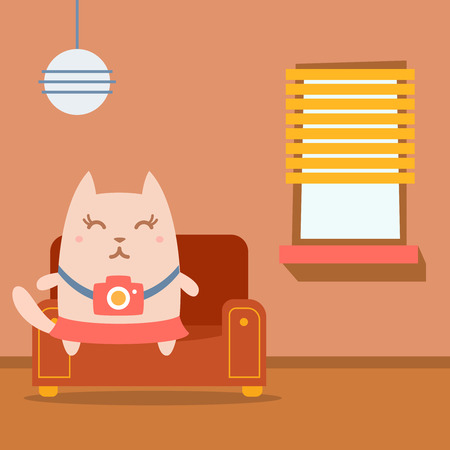 homely: Character photographer with a camera colorful flat.  Cat female sits on an arm  chair in the apartment