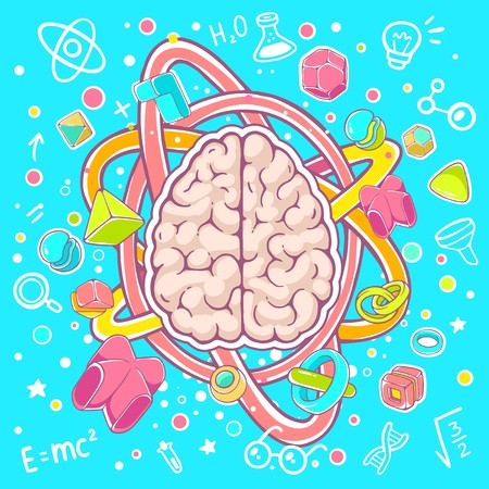 top model: Vector colorful illustration of model of human brain top view on blue background. Hand draw line art design for web, site, advertising, banner, poster, board, brochure and print.