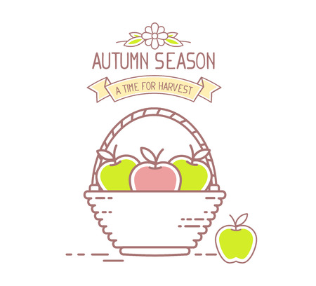 harvest time: Agribusiness. Vector illustration of wicker basket filled with red and green tasty apple fruits isolated on white background. Harvest time. Autumn season. Thin line art flat design of harvest of apple for farming and agricultural theme Illustration