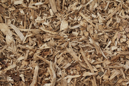 children play area: Wood chips background Stock Photo