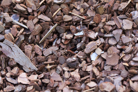 wood chip: Wood chip background texture with small chips