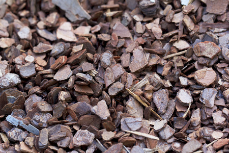 bark mulch: Wood chip background texture with small chips