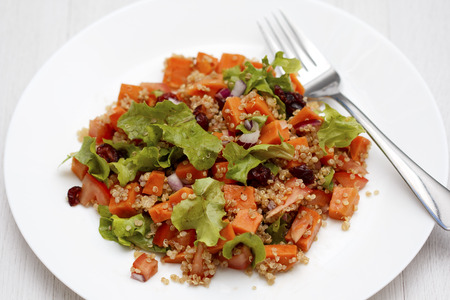 Quinoa salad with sweet potatoes, red onions, lettuce, cranberries and tomatoes