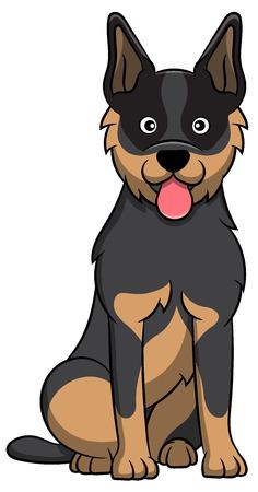 Cute Australian Cattle Cartoon Dog. Vector illustration of an australian cattle dog breed. Illustration