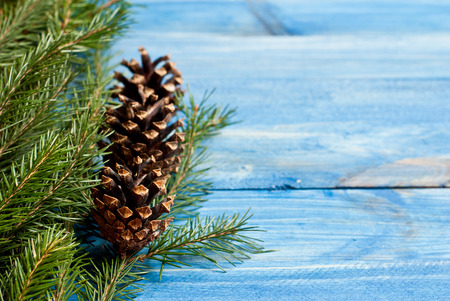 Christmas rustic background - vintage blue planked wood with tree twig and free text space photo