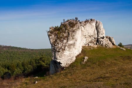 mirow: Meadow and limestone rocks, nature landscape in Jura Krakowsko-Czestochowska, Poland