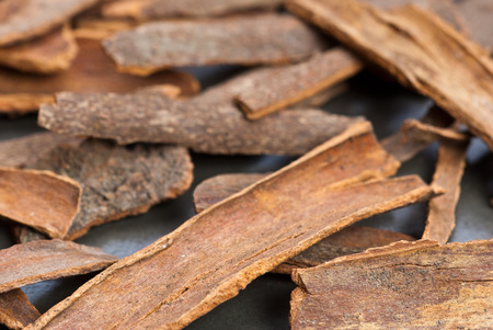 Dried cassia bark on gray table background - shallow depth of field