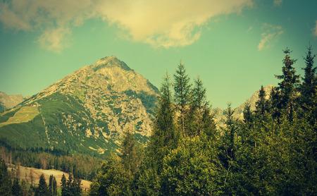 lomography: Tatra mountains near Strbske Pleso, Slovakia - photo with vintage effect