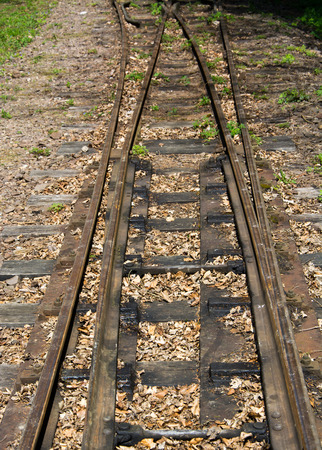 narrow gauge railway: Old narrow gauge railway tracks in Beech Mountains, Hungary Stock Photo