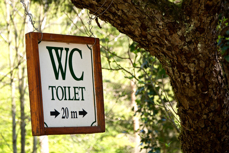 Vintage style wc sign with arrow hanging on a tree photo