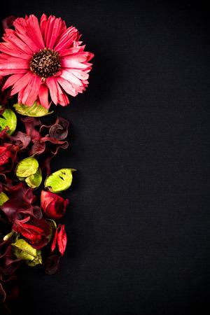 potpourri: Frame of potpourri on black canvas background Stock Photo