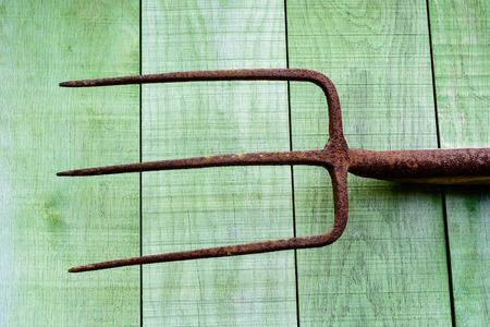 pitchfork: Old rusty pitchfork on green wooden planks Stock Photo