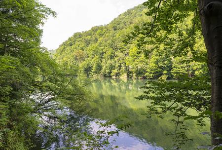 Green Hamori lake in Lillafured near Miskolc, Hungary. Springtime landscape in Beech Mountains