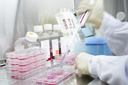 Medical chemistry biomedicine experiment