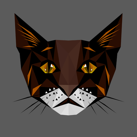 domestic cat: Symmetrical vector illustration of the cat. Made in low poly triangular style.