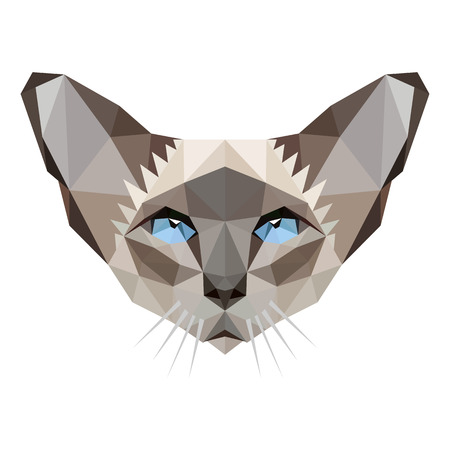 siamese: Symmetrical vector illustration of siamese cat. Made in low poly triangular style.