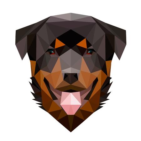 ロットワイラー犬の対称的なベクトル イラスト。低ポリ三角スタイルで作られています。