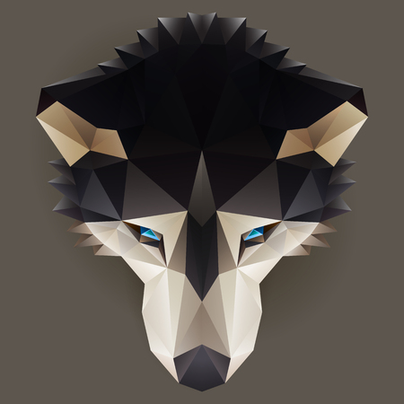 siberian husky: Symmetrical vector illustration of a siberian husky dog. Made in low poly triangular style. Illustration