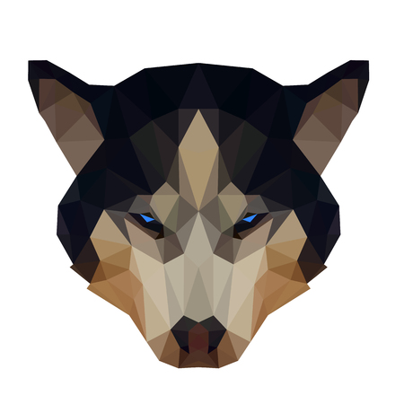 siberian husky: Symmetrical vector illustration of a siberian husky dog on a white background. Made in low poly triangular style.