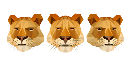 lioness: Set of lioness heads in low poly style. Vector illustration on white background.