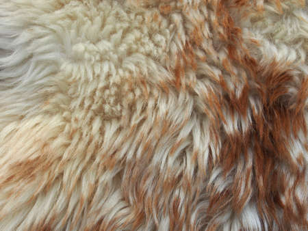 Light brown background, fur texture, close-up. Abstract, creative background in light dark colors.