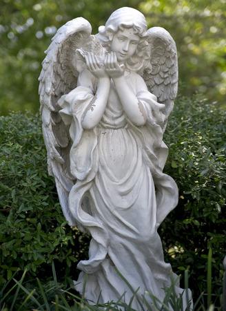 Angel Statue In Church Garden Stock Photo