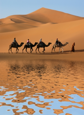 Caravane de chameaux en longeant le lac du désert du Sahara, le Maroc.