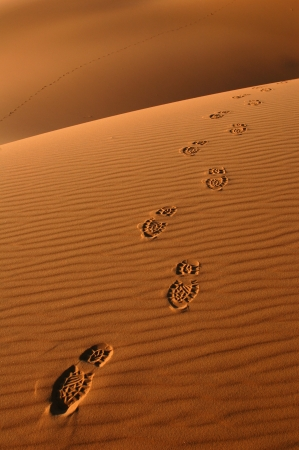 Human footsteps in the sand dunes of Erg Chebbi in the Sahara Desert, Morocco. Stock Photo - 15533165