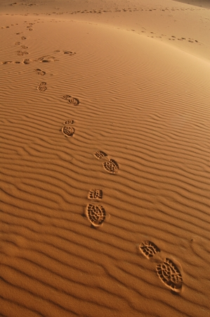 erg: Human footsteps in the sand dunes of Erg Chebbi in the Sahara Desert, Morocco.