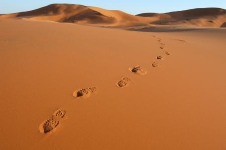 desert footprint: Human footsteps in the sand in the Sahara Desert, Morocco