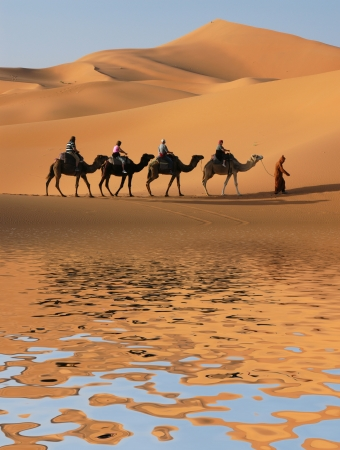 Camel caravan going along the lake the Sahara Desert, Morocco. photo